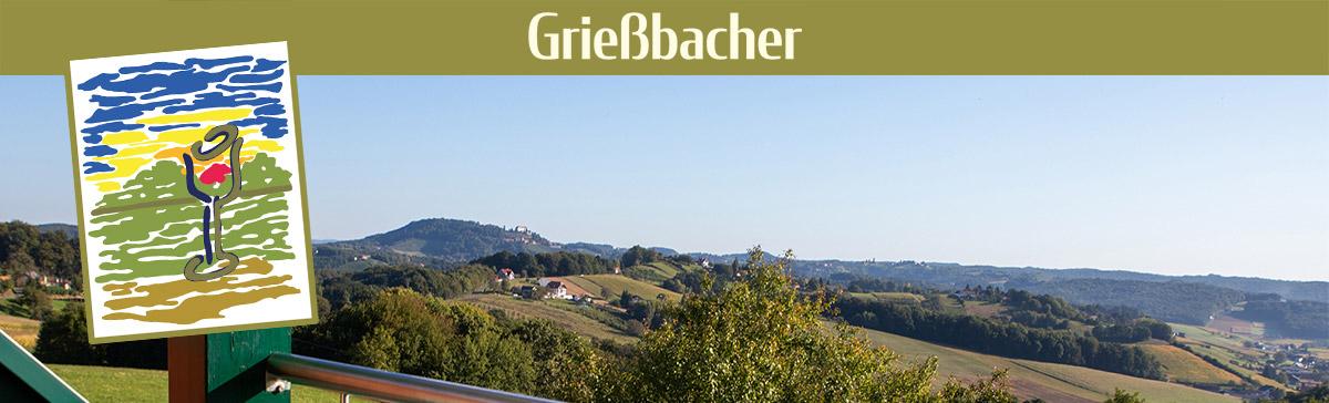 Gästezimmer Grießbacher - Weinbartenblick